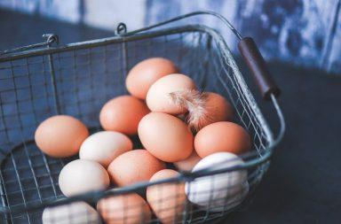 Czy jajka są zdrowe