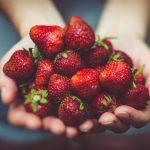 Jak najlepiej mrozić truskawki, by zachować ich smak na zimę?