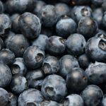 Jagoda czarna, goji, acai i kamczacka - właściwości zdrowotne
