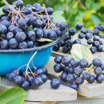 Jak zrobić przetwory z aronii na zimę? Sok, nalewka czy dżem z aronii?
