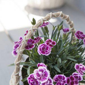 Koszyk wiklinowy na kwiaty