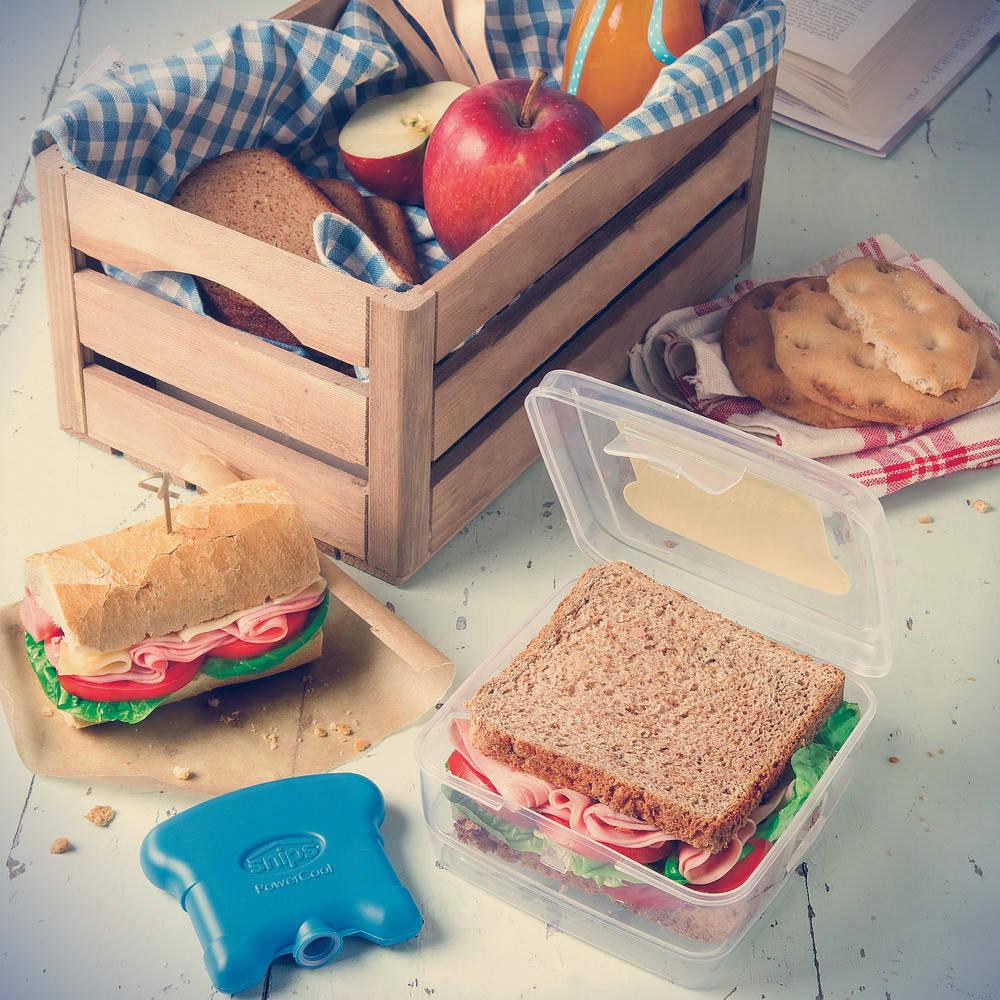 Pojemnik na kanapki do szkoły z wkładem chłodzącym Snips