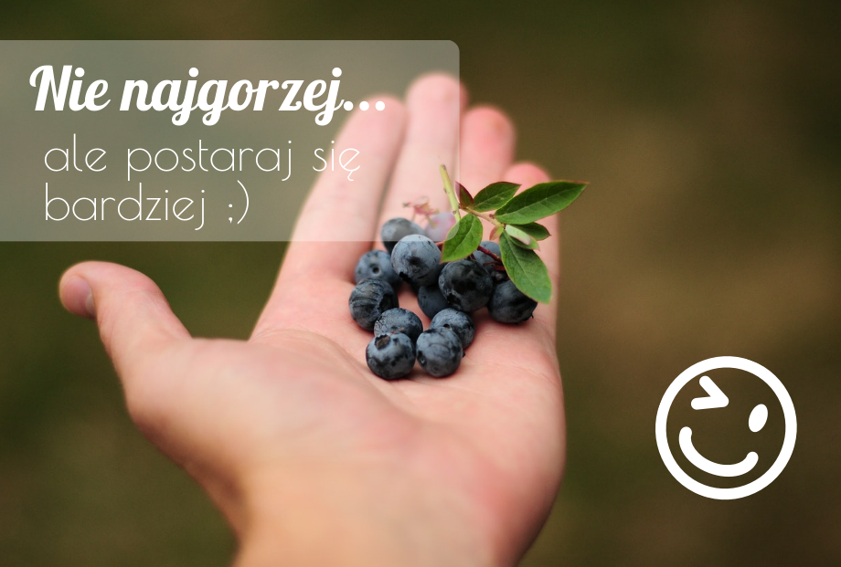 nie najgorzej - Quiz: Czy znasz jesienne krzewy i ich owoce?