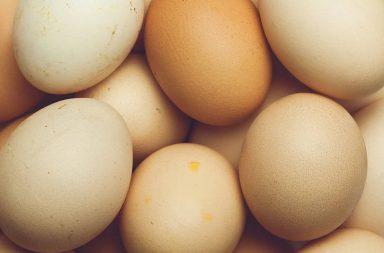 porady kuchenne dotyczące jajek