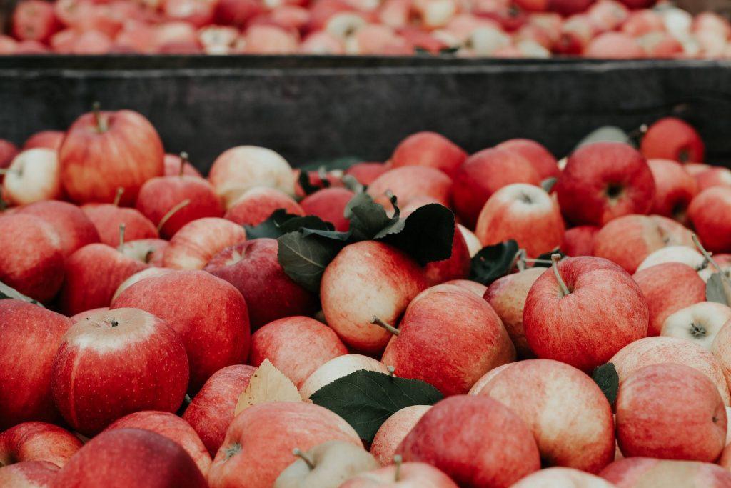 Jabłka - zimowe owoce