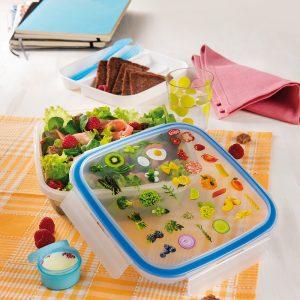 Lunch box z wkładem chłodzącym Snpis