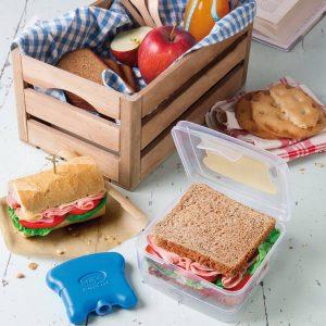 Pojemnik na kanapki z wkładem chłodzącym Snips