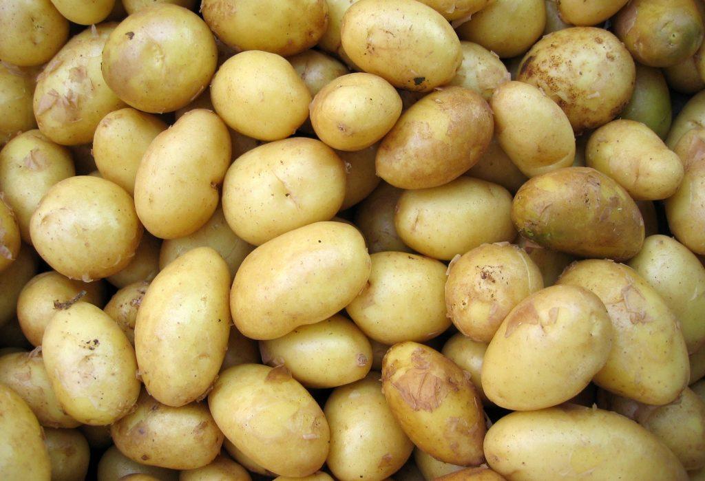 Ziemniaki - warzywa na zimę