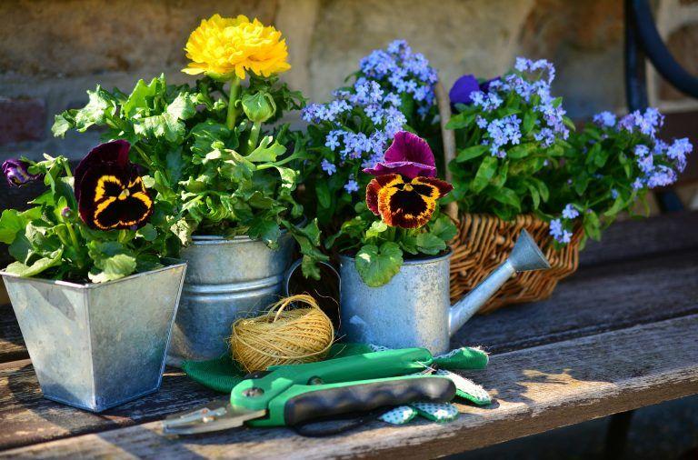 Ciekawe akcesoria ogrodowe - meble, ozdoby, gadżety do ogrodu