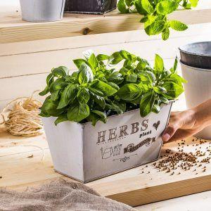 Doniczka na zioła metalowa Herbs Plant