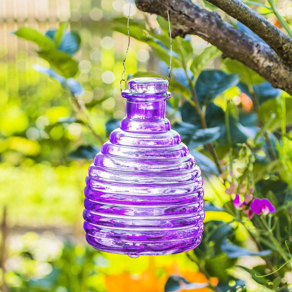 Pułapka szklana na osy do ogrodu