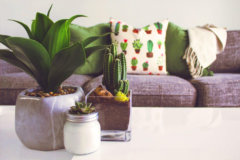 Wiosenne dekoracje do domu – Jak udekorować dom na wiosnę?