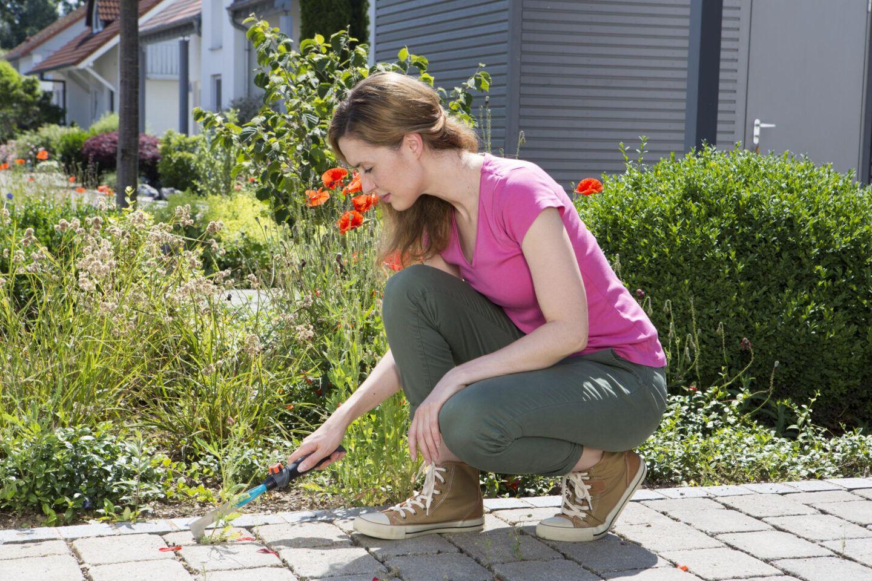 Sprzątamy ogród i działkę! Co będzie potrzebne?