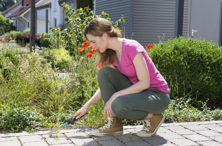 Sprzątamy ogród i działkę