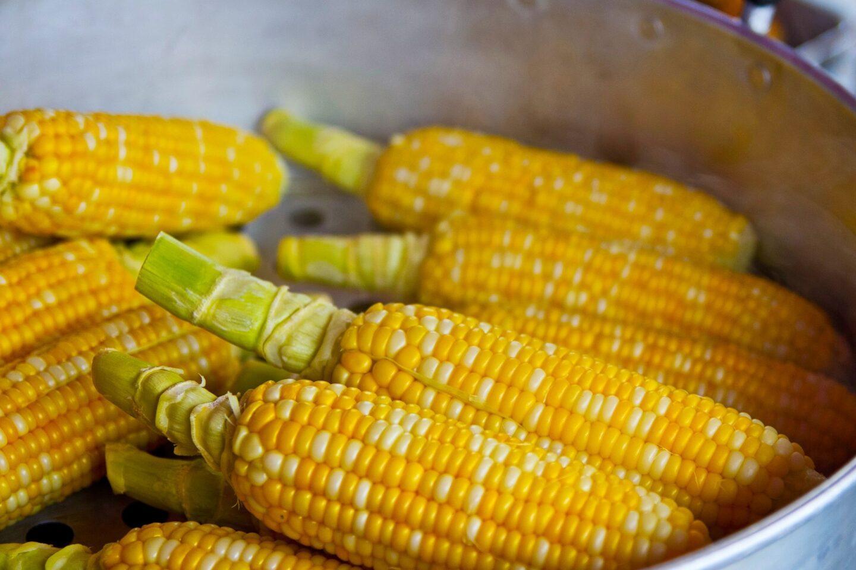 Ile czasu gotować kukurydzę w szybkowarze?