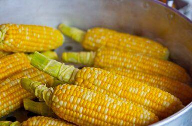 Ile czasu gotować kukurydzę w szybkowarze